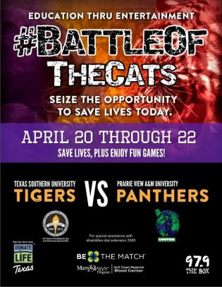 Battle Of The Cats