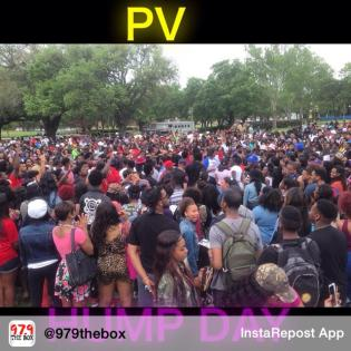 PV Spring Fest Hump Day