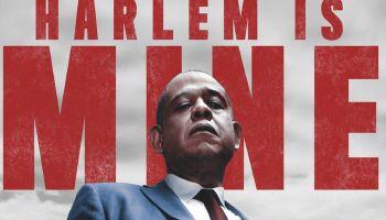 Harlem Is Mine Movie